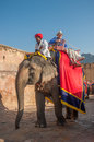 Jaipur rajastan india january decorated elephant at amb and its mahout amber fort on december in rajasthan Royalty Free Stock Photography