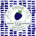 Jam label design template. for Blackberry dessert product with hand drawn sketched fruit and background. Doodle vector Blackberry