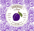 Jam label design template. for plum dessert product with hand drawn sketched fruit and background. Doodle vector plum illustration Royalty Free Stock Photo