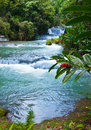 Jamaica. Dunn's River waterfalls Royalty Free Stock Photo