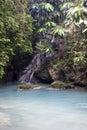 Jamaica river Royalty Free Stock Photo