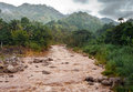 Jamaica. The river after a rain Royalty Free Stock Photo