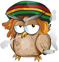 Jamaican owl cartoon on white background Stock Image