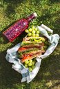 stock image of  Jamon and vegetable sandwiches in a basket, grapes and berry juice, outdoor picnic