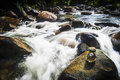 Janda baik downstream of waterfall flowing fast Royalty Free Stock Photo