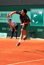 Janko Tipsarevic at Roland Garros 2012 Royalty Free Stock Images