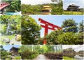 Japan collage photography of nature in Stock Images