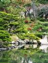 Japan Hiroshima Shukkeien Gardens Royalty Free Stock Photos