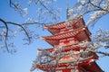 Japan Red Pagoda With Sakura C...
