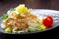 Japan salad with smoked chicken Stock Photography