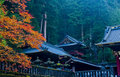 Japanese Autumn Stock Images