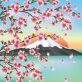 Japanese background with sakura Stock Photography