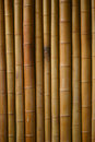 Japanese bamboo background Stock Images