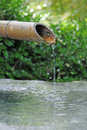 Japanese bamboo fountain with water dripping from snout Stock Images