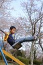 Japanese boy on the swing Royalty Free Stock Photo