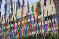 Japanese carp kites or shaped streamers decoration on the childrens day photo taken on april in tokyo tower Royalty Free Stock Photo
