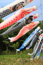 Japanese carp streamer are shaped wind socks traditionally flown in japan Stock Images