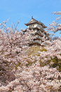 Japanese castle and Beautiful flower Royalty Free Stock Image