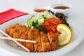 Japanese deep fried chicken katsu tonkatsu Royalty Free Stock Photos