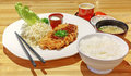 Japanese deep fried pork tonkatsu Royalty Free Stock Photos