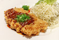 Japanese deep fried pork tonkatsu Royalty Free Stock Images