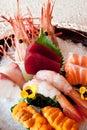Japanese dishes - sashimi Royalty Free Stock Photo