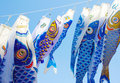 Japanese fish kites detailed at the tanabata festival Stock Images