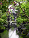 Japonec záhrada