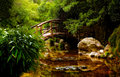 Japanese garden Royalty Free Stock Photo