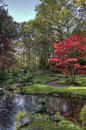 Japanese garden in autumn pond and trees the the hague holland Royalty Free Stock Photos