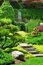 Japanese garden beautiful manicured with mature maple trees and junipers with a cascading waterfall in the background Stock Images