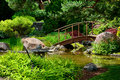 Japanese garden beautiful manicured with mature maple trees surrounding a pond with a wooden arched bridge Stock Photos