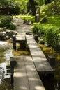 in the Japanese garden bridge Royalty Free Stock Photo