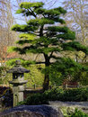Japanese Garden landscaping detail Royalty Free Stock Photo