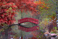 Japanese garden in fall beautiful michigan autumn time Stock Photo