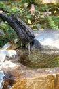A Japanese garden fountain Royalty Free Stock Photo