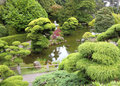 Japanese garden golden gate park Royalty Free Stock Photo
