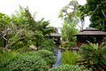 Japanese garden oriental on hayman island Stock Photography