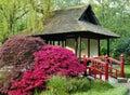 Japanese garden, Park Clingendael, The Hague Royalty Free Stock Photo
