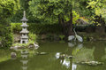Japanese garden pond Royalty Free Stock Photo
