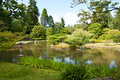 Japanese garden, pond, lantern Royalty Free Stock Image