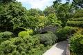Japanese garden spring time Royalty Free Stock Photo