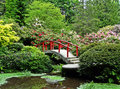Japanese Garden Red Bridge Flower Bushes Royalty Free Stock Photo