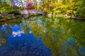 Japanese Garden Reflection in Fall Stock Images