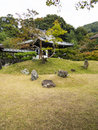 Japanese garden with rock grass and trees in kyoto japan Royalty Free Stock Photos
