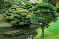 Japanese garden in san francisco Stock Photo
