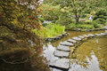 Japanese garden. A stream and  path Royalty Free Stock Image