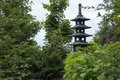 Japanese garden in summer. With towering trees sculpture Royalty Free Stock Photo
