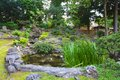 Japanese garden at sunny day Royalty Free Stock Image