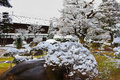 Japanese Garden in Winter Stock Image